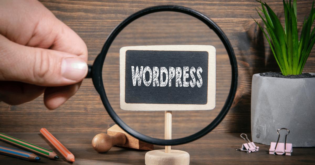 5 essentielle tips til dig, der netop er gået i gang med at designe hjemmeside i WordPress